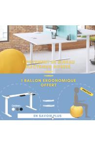 Pietement de bureau électrique réglable en hauteur + Ballon ergonomique GRATUIT