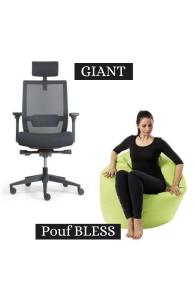 OFFRE SPÉCIALE - 1 siège Giant acheté = 1 pouf Bless OFFERT